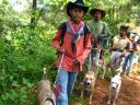Boar hunting in Sulit Air